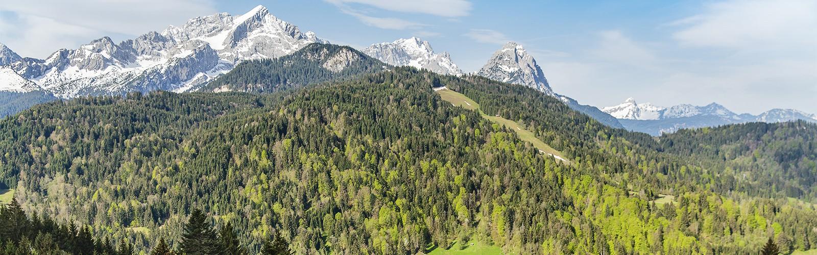 Alpenblick vom Eckbauer